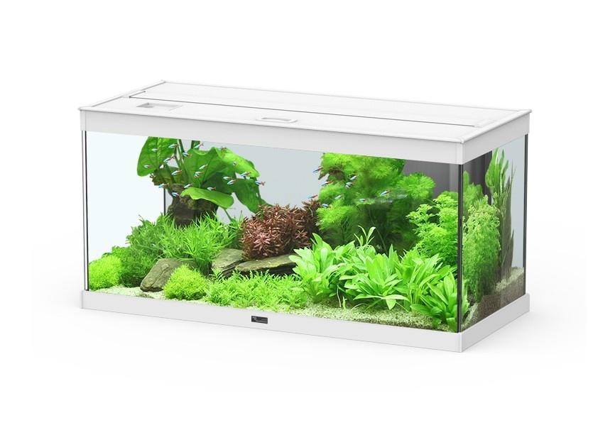 Aqualine terraline aquariensets for Petit aquarium rond